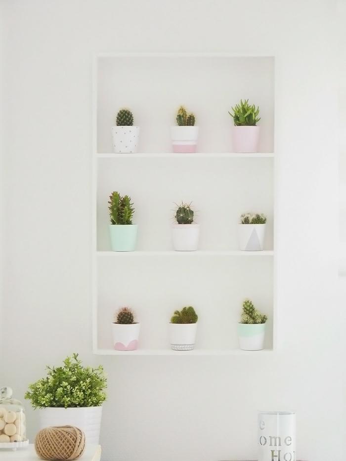 Fabriquer une étagère à cactus
