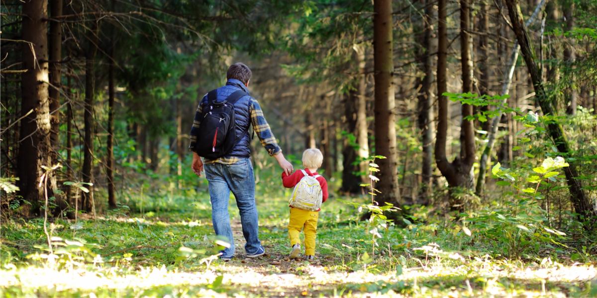 balade parents enfants nature forêt